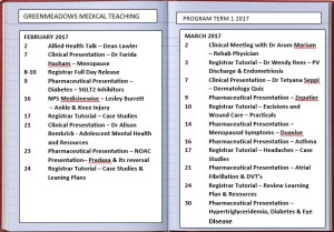 Greenmeadows Medical Teaching Program for Term 1 - 2017