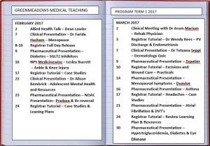 Greenmeadows Medical Teaching Program for Term 1 - 2017